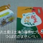 夏休み(3日目):つくばツアー<筑波山編>