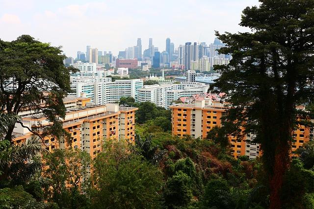 シンガポールでは頭上に注意?キラー・リターの世界……