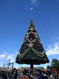 ディズニーシーのクリスマスツリー
