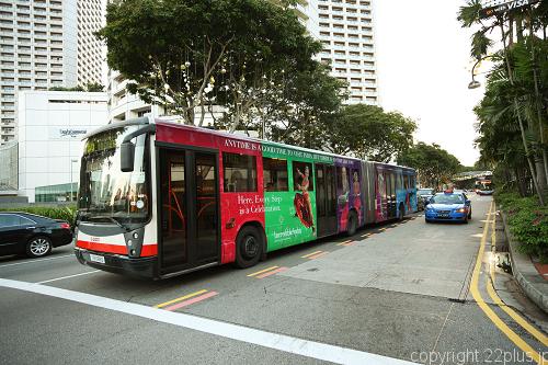 シンガポールのバス、避けがたい割り込みと騒音(そして騒音を我慢してる今)