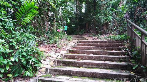 マウントフェーバー公園内の階段