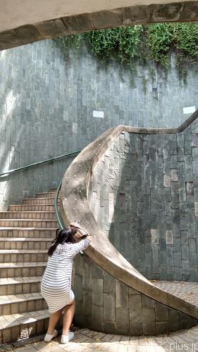 フォート・カニング・パークに行く途中の有名な撮影スポットの階段(写真を撮ってる人がたくさんいました)